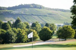 Bild eines Grüns mit Weinbergen im Hintergrund
